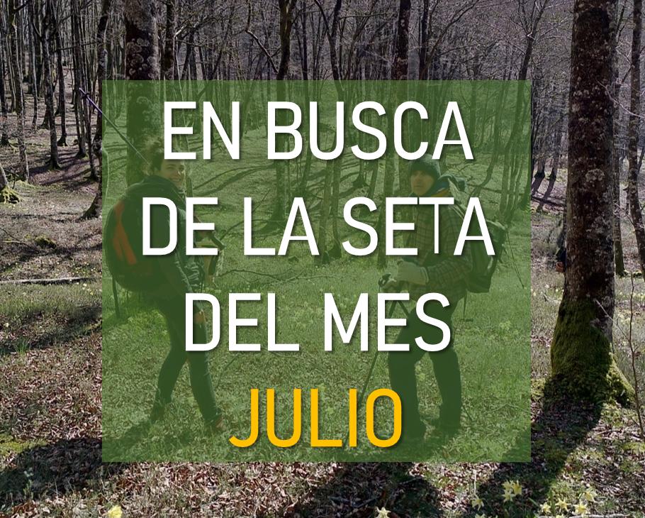 NOTICIA_JULIO.png